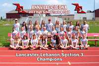 ACHS Girls Track & Field Section 3 Champions 2014